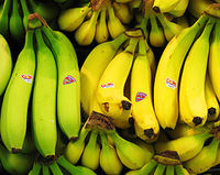 Bananas positive quotes