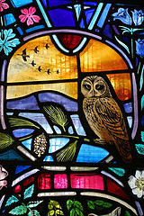 Stained_glass_window_dornoch_cathed