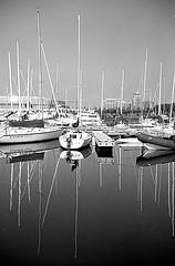 Safe_harbour