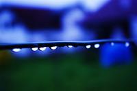 Rain_drops_fallingjpeg